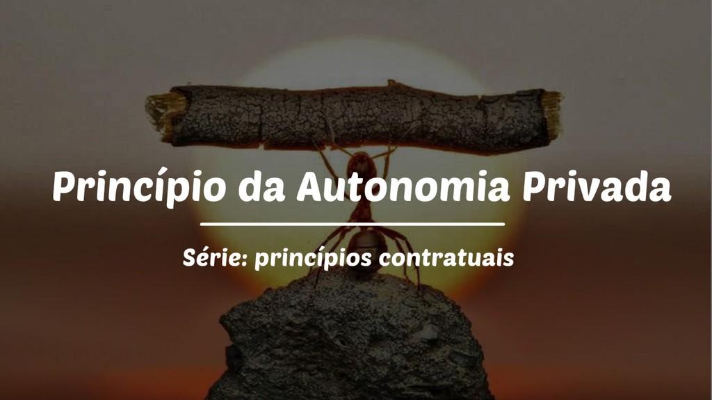 Princpio da Autonomia Privada